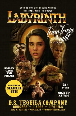 DS Trivia – Labyrinth 2020
